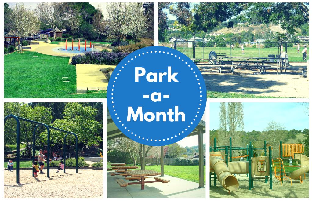 Volunteer Park Clean-up