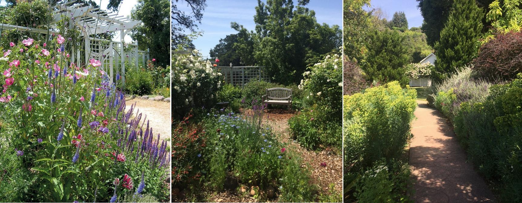 Falkirk Garden Images