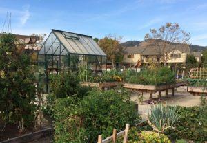 Canal Community Garden