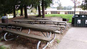 Terra Linda Park