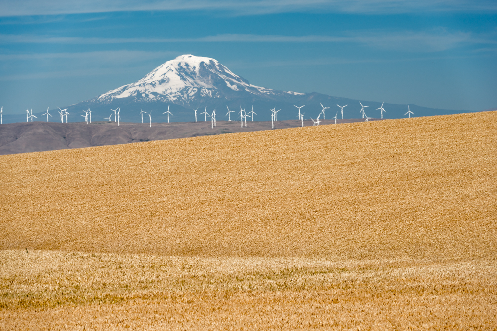 Wind turbines on the Sherman County prairie. Photo courtesy of Gary Halvorson, Oregon State Archives.