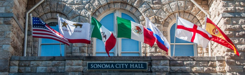Flags Over City Hall