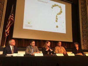 Cannabis Town Hall #2 Panel