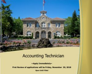 Accounting Technician Brochure