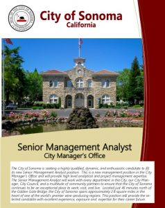 Senior Management Analyst