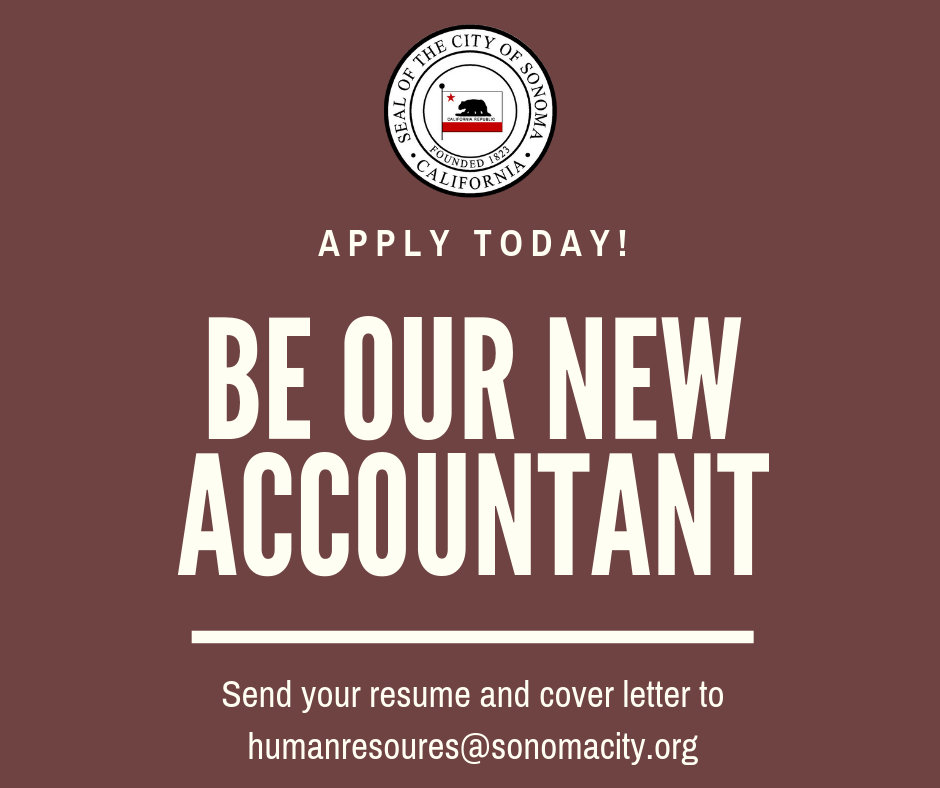Be our new accountant!