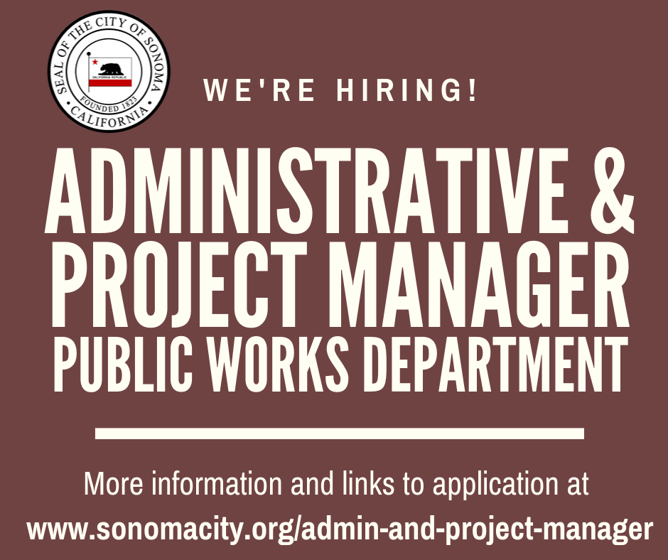 Admin and Project Manager