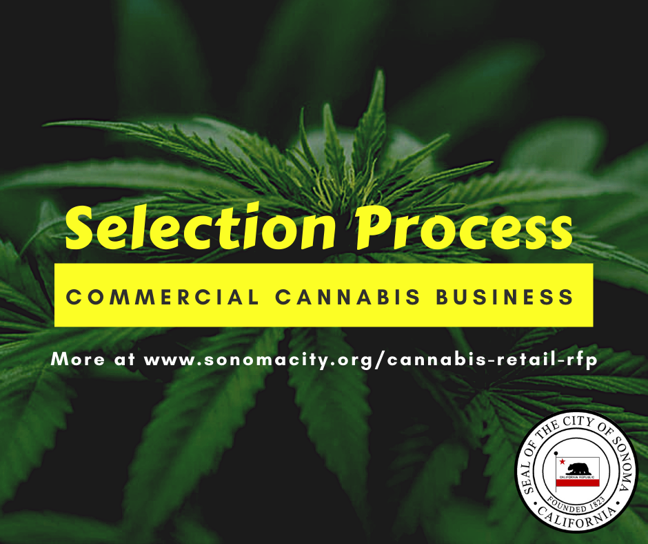 Commercial Cannabis Business Selection Process