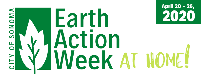 Earth Action Week...at home!