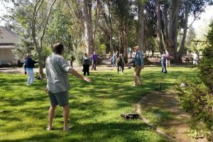QiGong in the Park