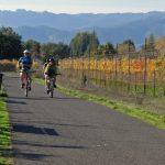 Cyclists on the city bike path
