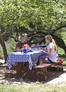 Bartholomew Park picnic