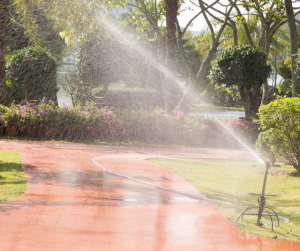 sprinkler overwatering in the middle of the day