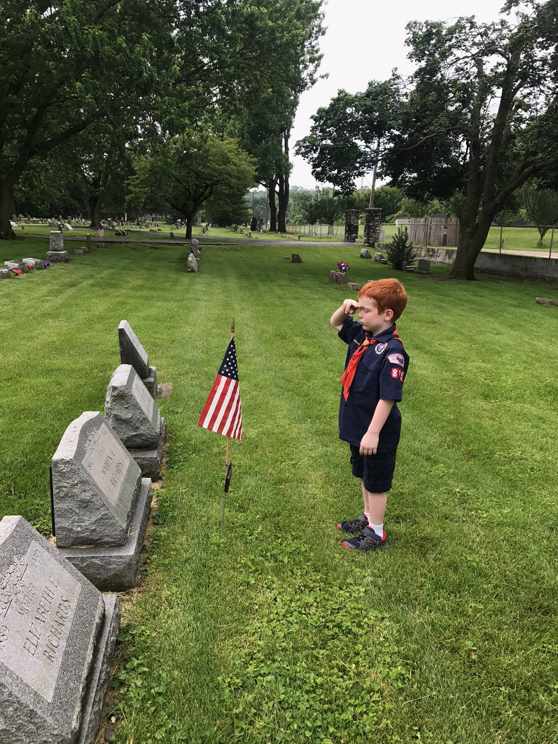 Boy Scout Salutes Flag
