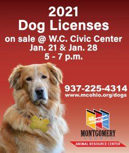 dog licenses sales 2021