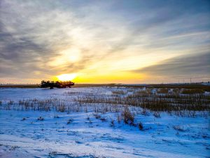 A snowy field at sunset