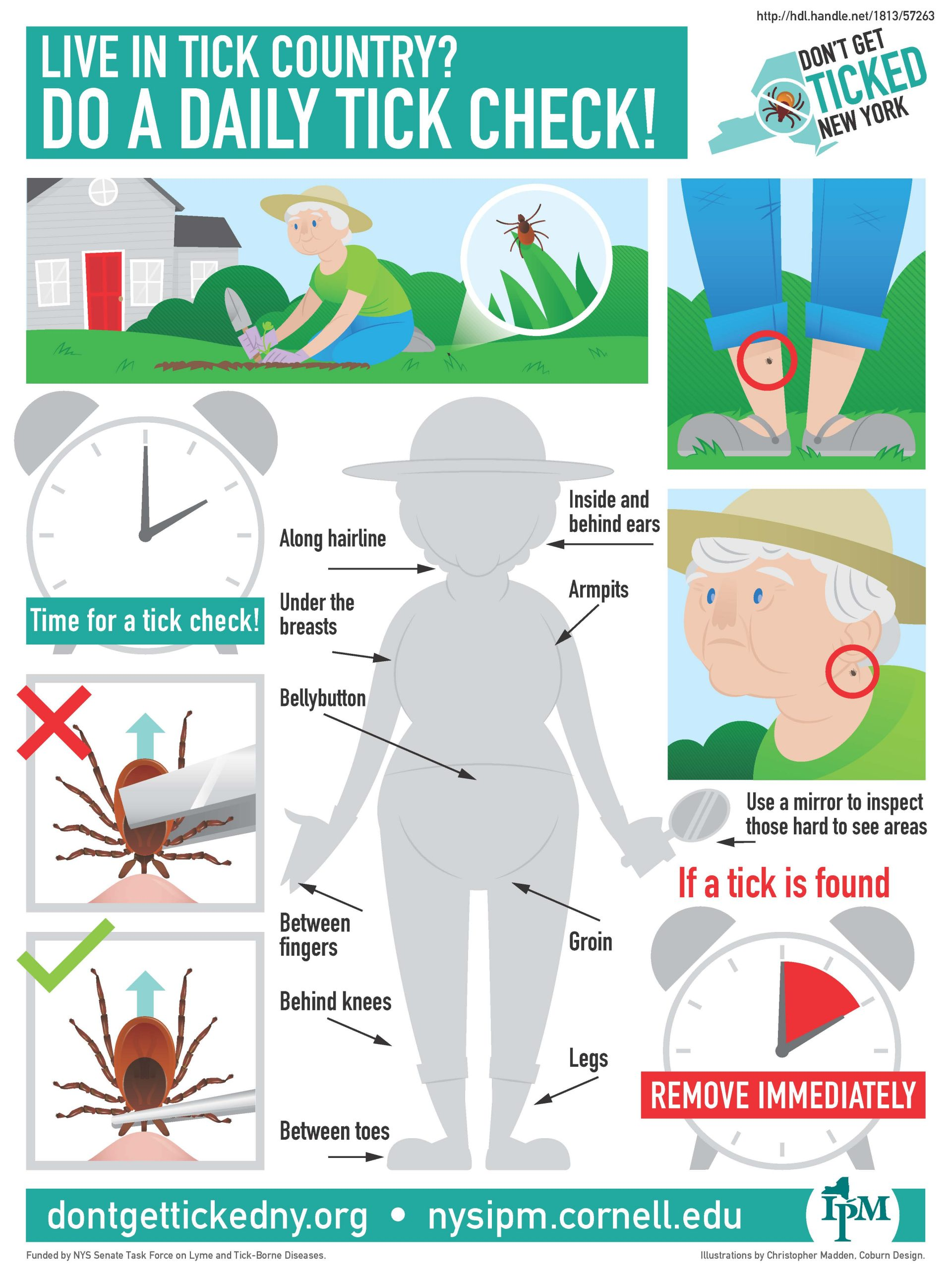 Infographic describing how to check yourself for ticks