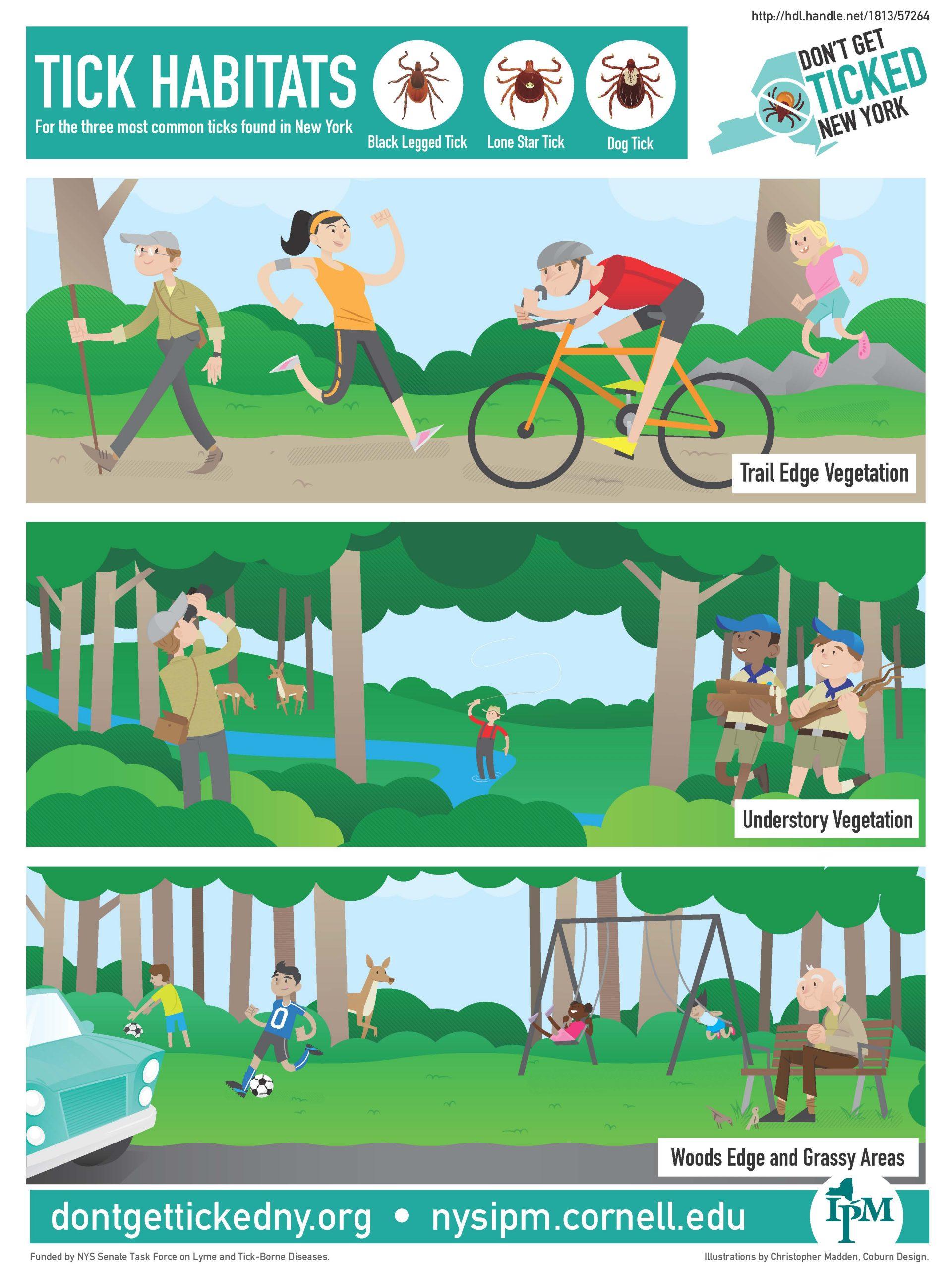 Infographic describing different tick habitats