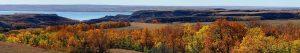 View of red, orange, and yellow leaves of trees along Lake Sakakawea