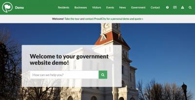 Government website demo