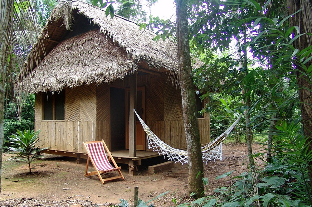 Madidi Jungle