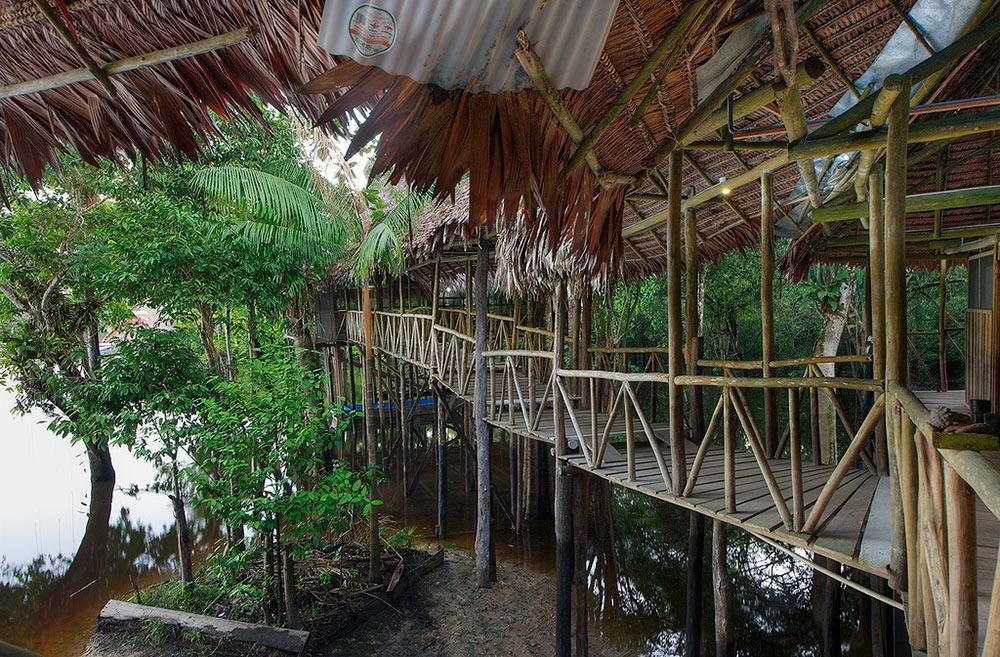 Tahuayo Amazon