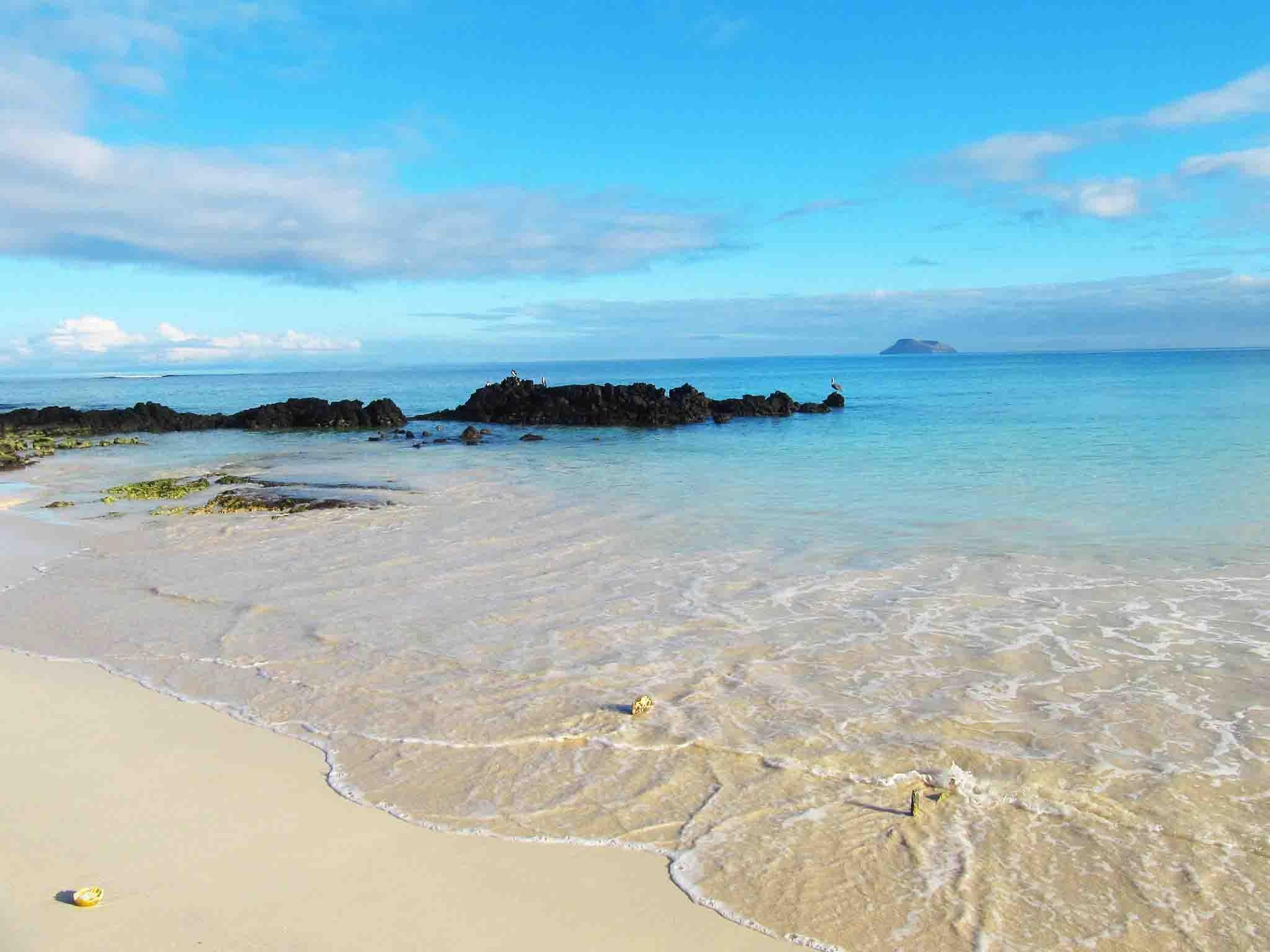Galapagos Inseln Naturgeschichte