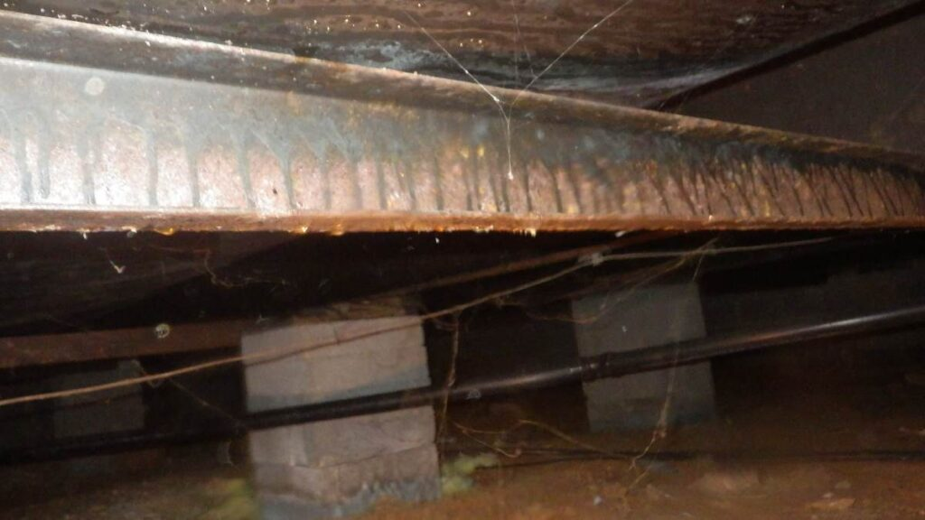 crawl space water damage
