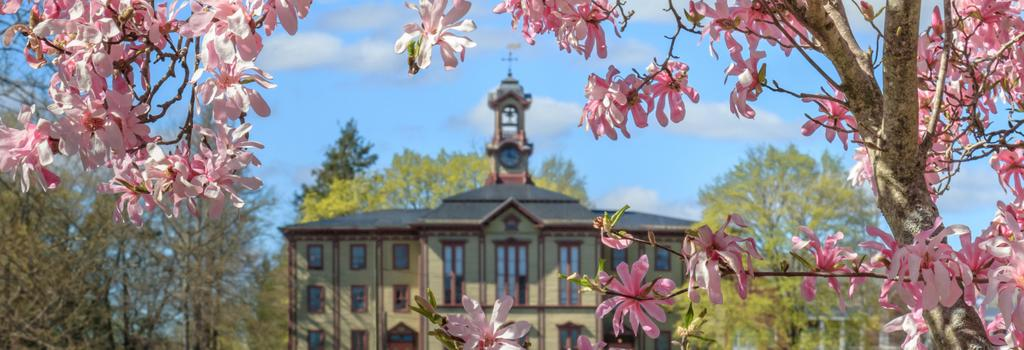 Academy Building and Spring Flowers