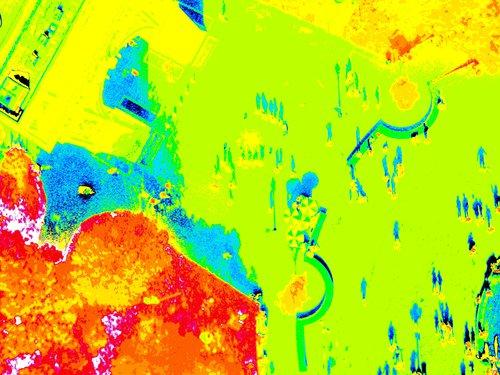 IMG_2031-NDVI.jpg