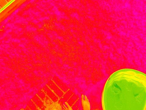 IMG_0941_NDVI_Color.jpg