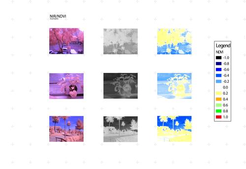 samples2.jpg