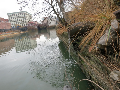 2013_11_22_Staats_or_Marylander_Brook_outflow_in_Gowanus_4th_Street_Basin_pic_by_Eymund_Gowanus_Dredgers_lowres.jpg