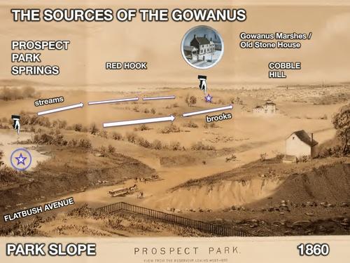 2014_Gowanus_CSI_Unit_Cold_Cases_1860_Prospect_Park_Wetlands.jpg