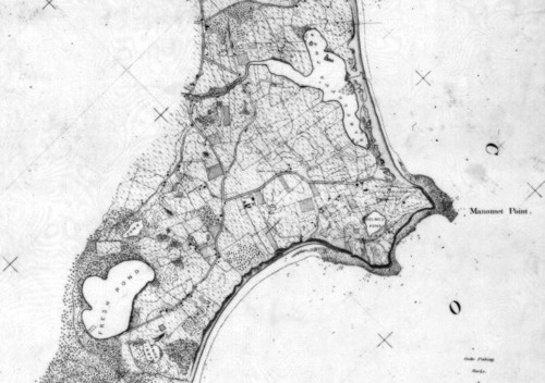 8_1866_West_Shore_Coastal_Survey_Map_cropped.jpg