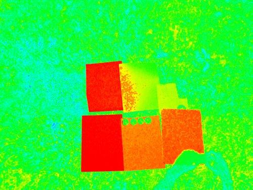 red1029_NDVI_JPEG.jpg