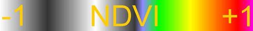 NDVI_VGYRM_lutAy.jpg