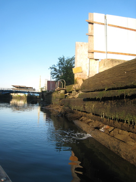2014_7_17_Lightstone_Catkill_Spring__a_City_watermain_break_into_Gowanus_Canal_to_check_IMG_7833.jpg