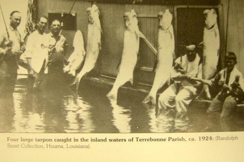 2014_11_14_Public_Lab_Barn_Raising_Cocodrie_Louisiana_Eymund_IMG_1545.JPG