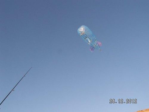aerostat_aloft_day.JPG