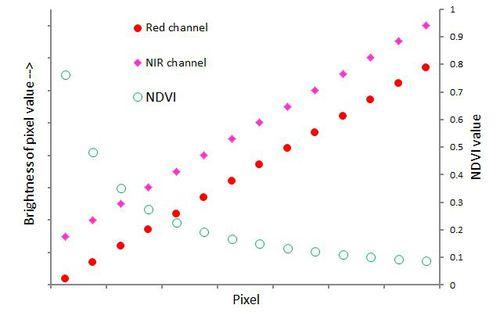 NDVI_parallel.JPG