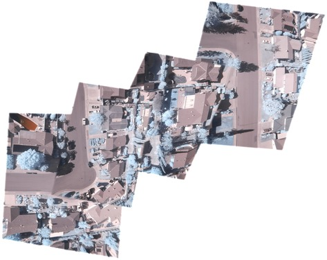 mobius-infragram-testing.jpg