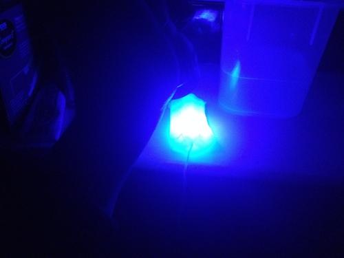 Glow_Tampon.JPG