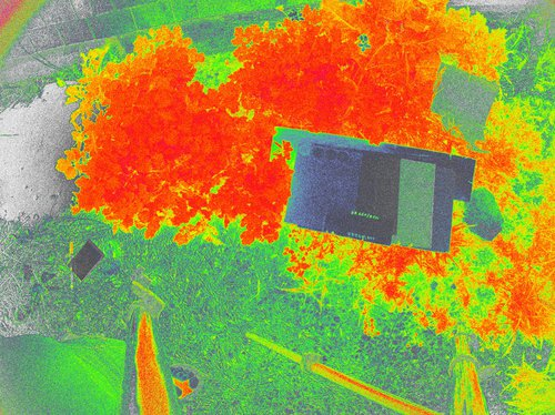 CRW_0196_NDVI_Color.jpg