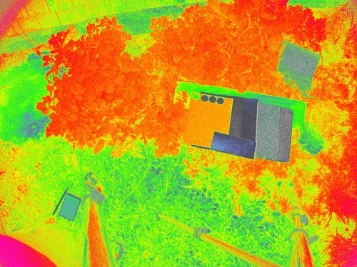 CRW_0199_NDVI_Color.jpg