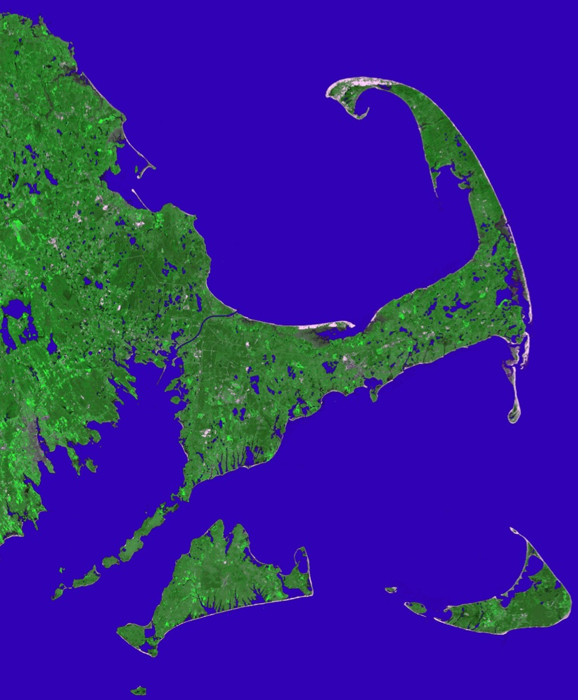 Public lab mapping biodiversity hotspots shannon - What is a cape cod ...