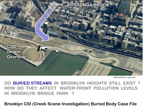 1_Ihpetonga_Brook_Brooklyn_CSI_Case_File.png