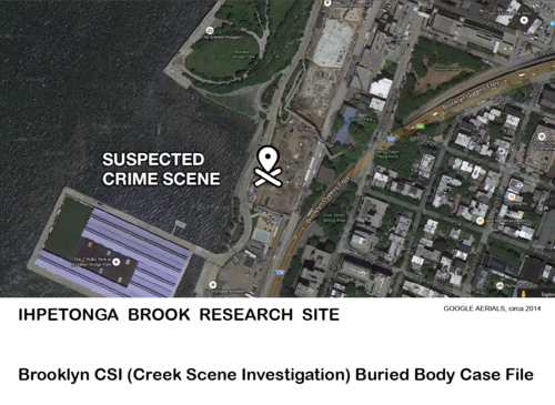 2_Ihpetonga_Brook_Brooklyn_CSI_Case_File.png