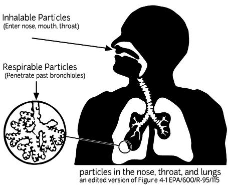 inhalable-respirable.png