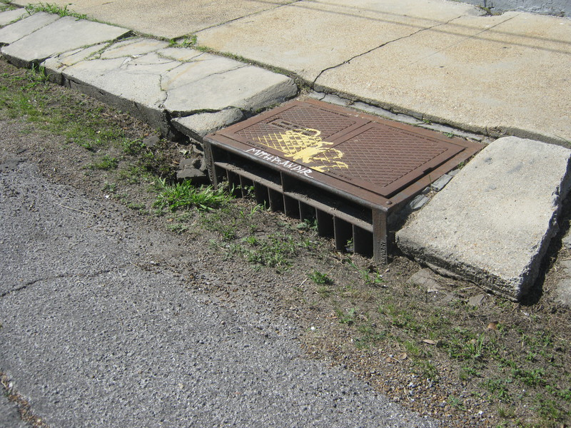 The only stormdrain we found on the street